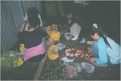 児童労働モンゴル